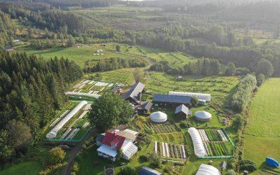 Permakulturplats: Ridgedale Permaculture