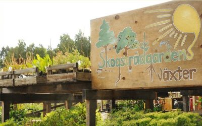 Permakulturplats: Ekokollektivet Rönnsåker och plantskolan Skogsträdgårdens växter