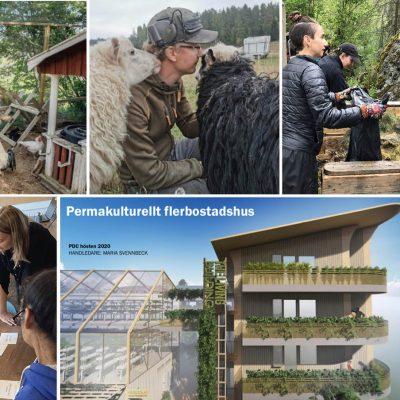 Certifieringskurs i Permakultur (PDC) i Stockholm 2022